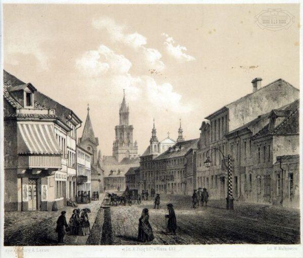 zdjęcie krakowskiego