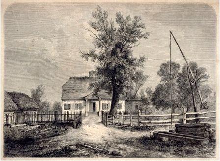 Rysunek domu w otoczeniu drzew